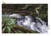 Wilson Creek #18 With Added Cedar Waxwing Carry-all Pouch