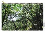 Winding Road Santa Ynez Mountains Carry-all Pouch