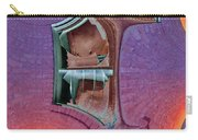 Window 2 Carry-all Pouch