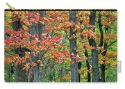 Windy Day Autumn Colors Carry-all Pouch