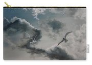 Windy Weather Carry-all Pouch by Diane Kraudelt