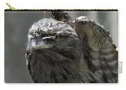 Wings Above A Tawny Frogmouth That Looks Interesting Carry-all Pouch