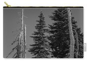 Winter Alpine Trees, Mount Rainier National Park, Washington, 2016 Carry-all Pouch