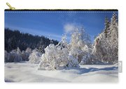 Winter Blanket Carry-all Pouch