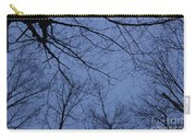 Winter Blue Sky Carry-all Pouch