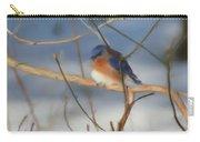 Winter Bluebird Art Carry-all Pouch
