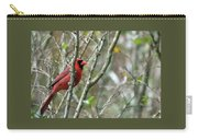 Winter Cardinal Sits On Tree Branch Carry-all Pouch
