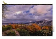 Winter Colors 23 Carry-all Pouch