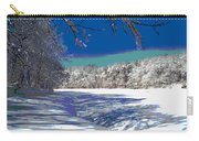 Winter In New England Carry-all Pouch