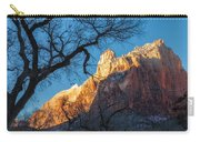 winter Light 2 Carry-all Pouch