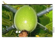 Winter Melon In Garden 1 Carry-all Pouch
