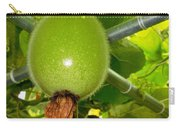 Winter Melon In Garden 2 Carry-all Pouch