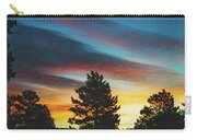 Winter Morning Glory Carry-all Pouch by Jason Coward