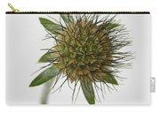 Winter Pin Cushion Plant Carry-all Pouch