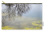 Winter Pond Reflections Carry-all Pouch