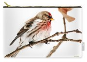 Winter Redpoll Carry-all Pouch