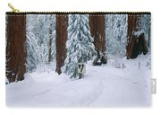 Winter Road Into Sequoia National Park Carry-all Pouch