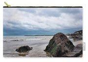 Winter Seascape - Lyme Regis Carry-all Pouch