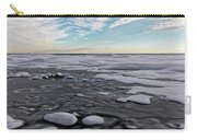 Winter Shoreline Carry-all Pouch