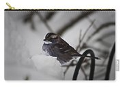 Winter Sparrow Carry-all Pouch