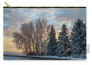 Winter Colors. Carry-all Pouch