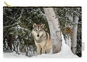 Winter Visitor Carry-all Pouch