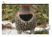 Wintering Flicker Carry-all Pouch