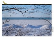 Wintry Lakeshore Carry-all Pouch