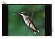 Wire Walker Young Male Ruby-throated Hummingbird    Carry-all Pouch