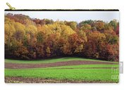 Wisconsin Colors Carry-all Pouch