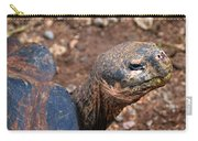Wise Old Tortoise Carry-all Pouch