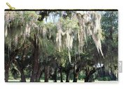 Wispy Willows Carry-all Pouch