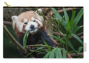 Wizened Red Panda Carry-all Pouch