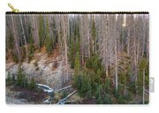Wolf Creek Pass Forest Landscape Carry-all Pouch