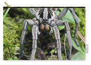 Wolf Spider Hogna Sp Male, Mindo Carry-all Pouch
