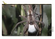 Wolf Spider With Egg Sac Carry-all Pouch