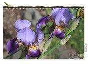 Wonderful Purple Irises Carry-all Pouch