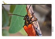 Wood Beetle Exploring Carry-all Pouch
