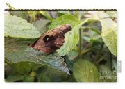 Wood Butterfly Carry-all Pouch