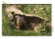 Woodchuck Ready For Spring Carry-all Pouch