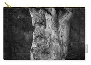 Wooden Face 2 Carry-all Pouch