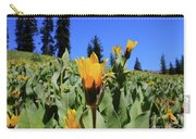 Woolly Mule's-ear At Lassen Park Carry-all Pouch