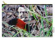 Wooly Bear 1 Carry-all Pouch