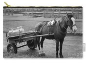 Work Horse And Cart Carry-all Pouch