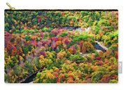 Worlds End State Park Lookout 3 - Paint Carry-all Pouch