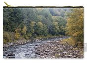 Worlds End State Park Loyalsock Creek Carry-all Pouch