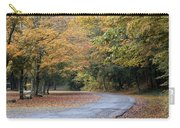 Worlds Ends State Park Road Carry-all Pouch