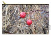 Wrinkled Wild Rose Hips Carry-all Pouch