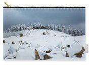 Wurmberg, Harz Mountains Carry-all Pouch