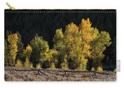 Wyoming Autumn Color One Carry-all Pouch